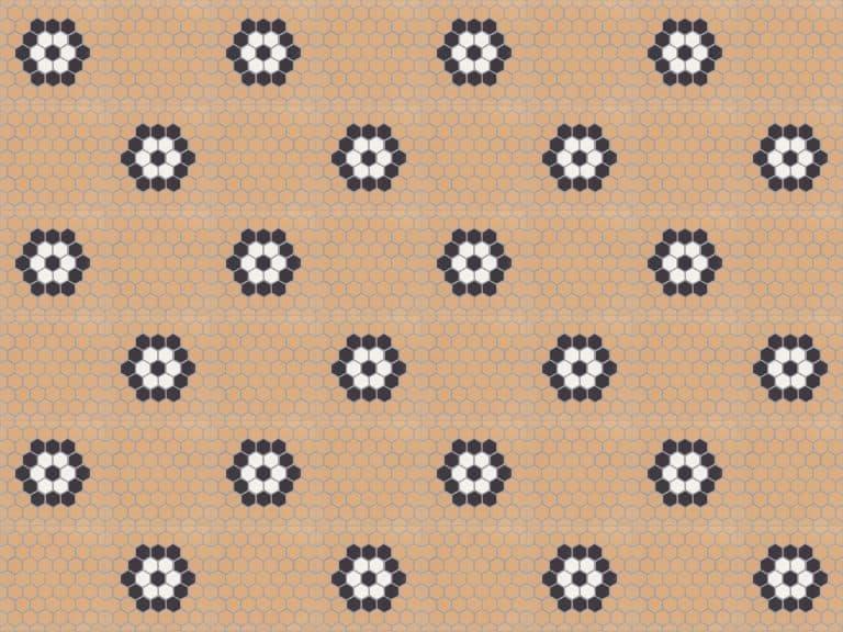 penny hexa 0901
